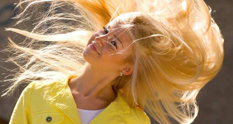 blond bij geel