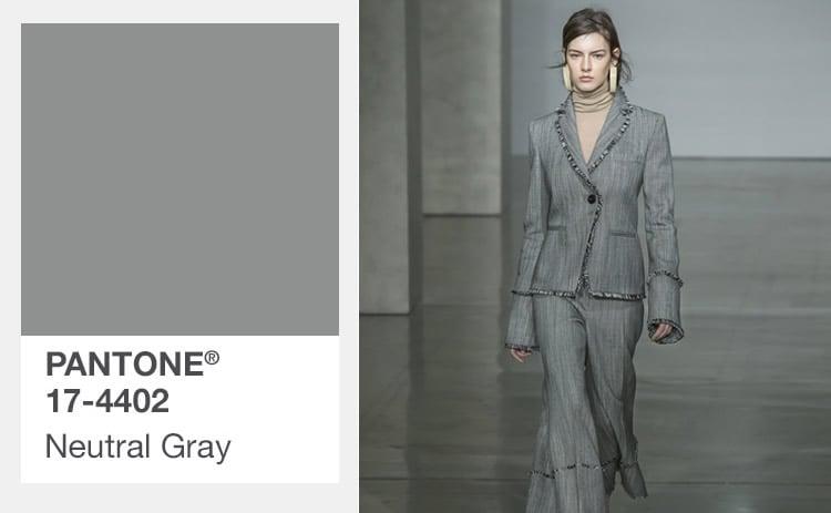 neutrale kleur grijs