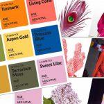 kleuren mode voorjaar 2019