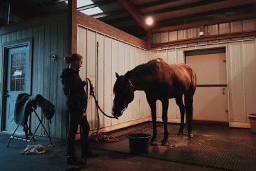 je eigen paard