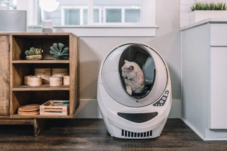 zelfreinigende kattenbak