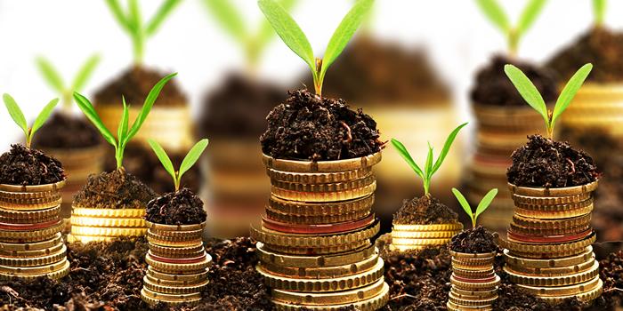 crowdfunding bepaal zelf wat er met je geld gebeurt