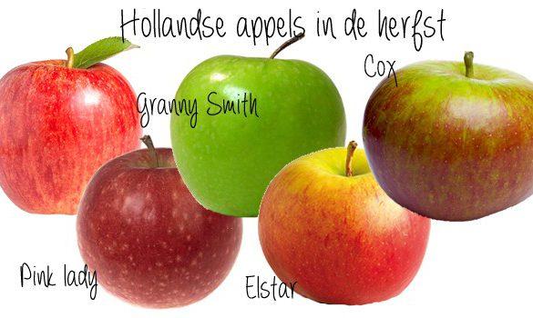 hollandse appels in de herfst