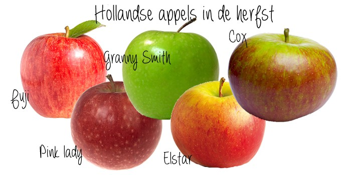 hollandse appels in de herfst
