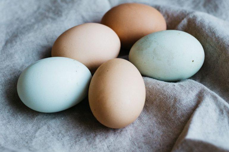 eieren bewaren