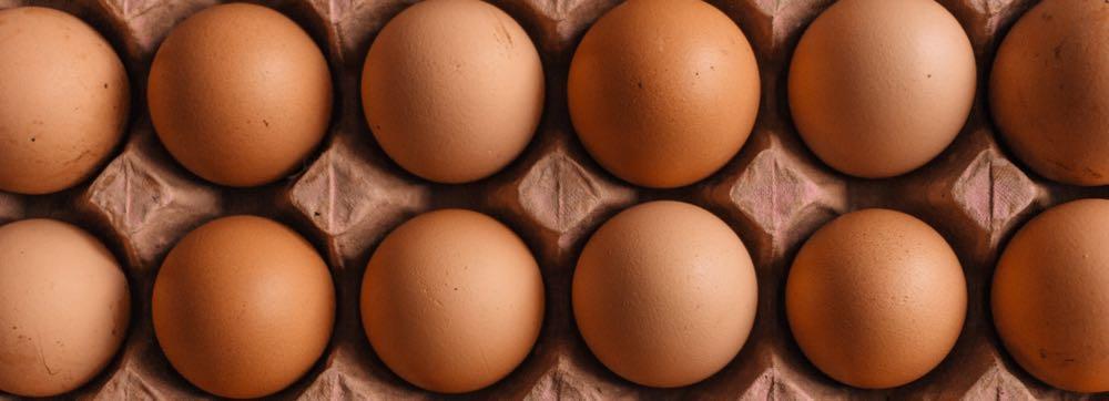 eieren in karton bewaren