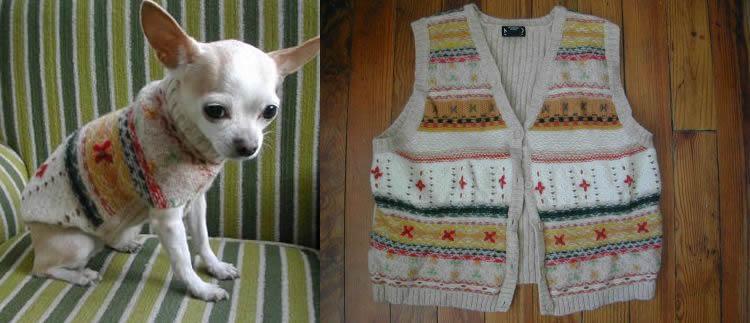 vest voor hond